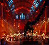 Natural History Museum,Cromwell Road, London SW7 5BD